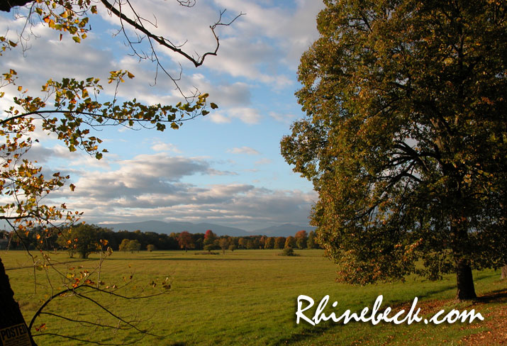 Welcome to Rhinebeck New York's online resource guide with links to dining, shopping and lodging.
